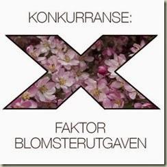 x-faktor-rosa-394x394