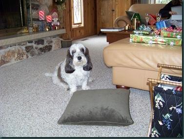 Christmas 2007 003