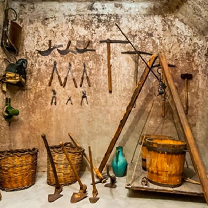 Museo della Civiltà del Vino Primitivo meta per enoturisti.