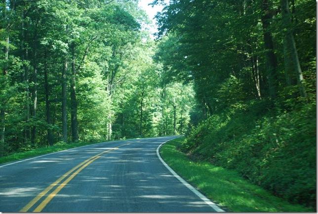 08-26-2011 A Shenandoah NP Skyline Drive 46-21 028