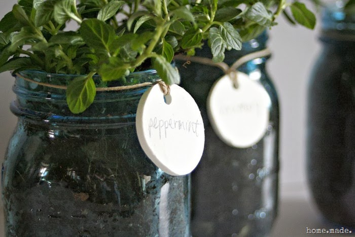 Mason Jar Herb Planter Closeup