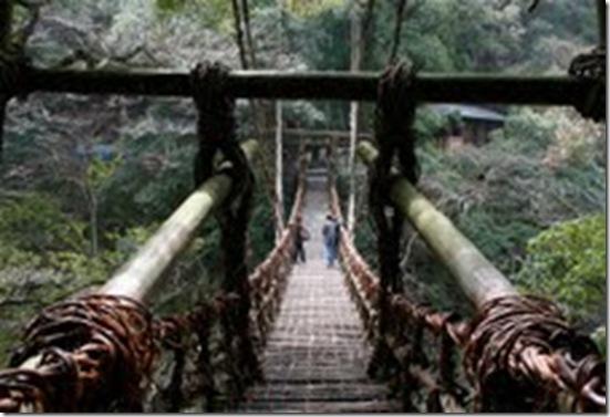 ponte 09