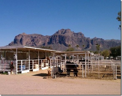 Stable in the shadow of Superstition