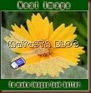 Neat-Image