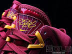 hardwood lebron7 cavfanatic 02 First Look at Nike LeBron X Low   Cavs Hardwood Classic?!