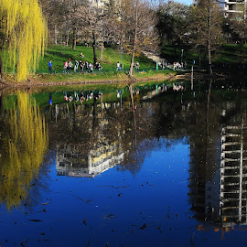 Upside down by Alin Militaru - City,  Street & Park  City Parks ( mirror, building, arhitecture, park, reflections, places, people )