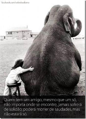 dia-do-amigo-facebook