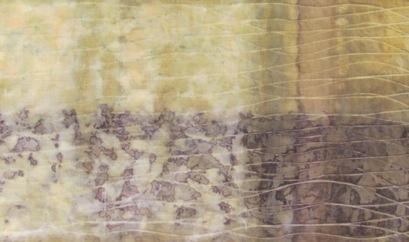 ECO PRINT Schlehenblätter auf Seide  teilweise Eisenbeize