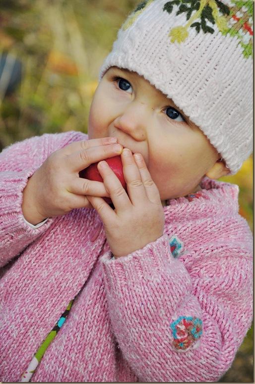 life2011-11-25_0001DSC_0149f