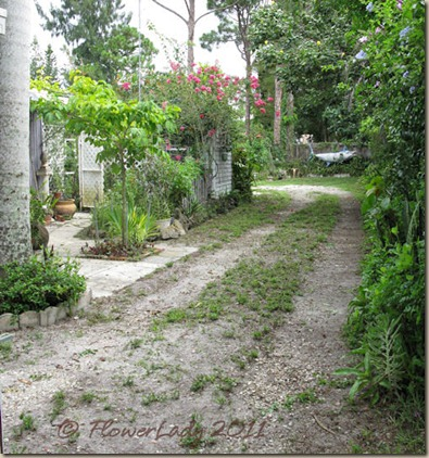 07-06-driveway2