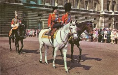 Trooping the Colour 1981