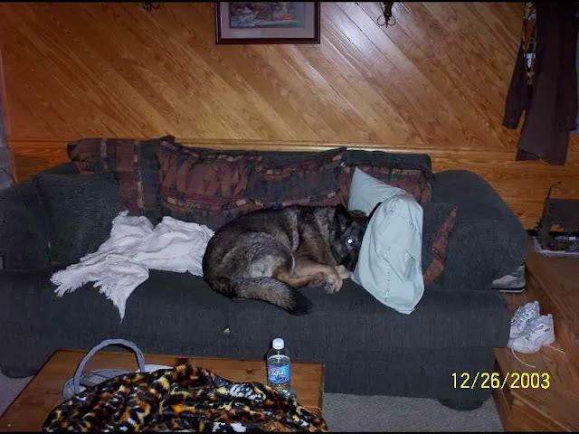 morgan_couch.jpg