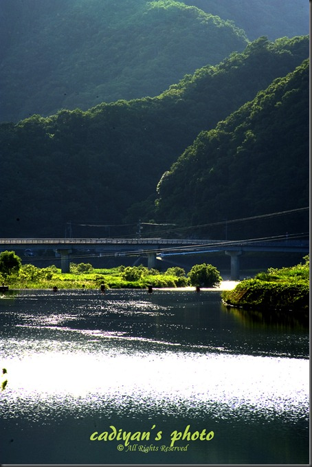D700_2012-08-01_012