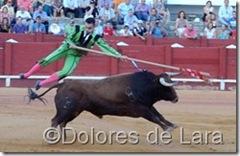 ©Dolores de Lara (93)[6]