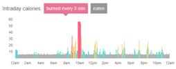 Example of activity monitoring during the day