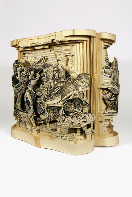 brian Dettmer - arte com livros  (11).jpg