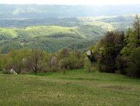 Razgibano Posavsko hribovje