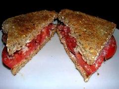 tomato_sandwich