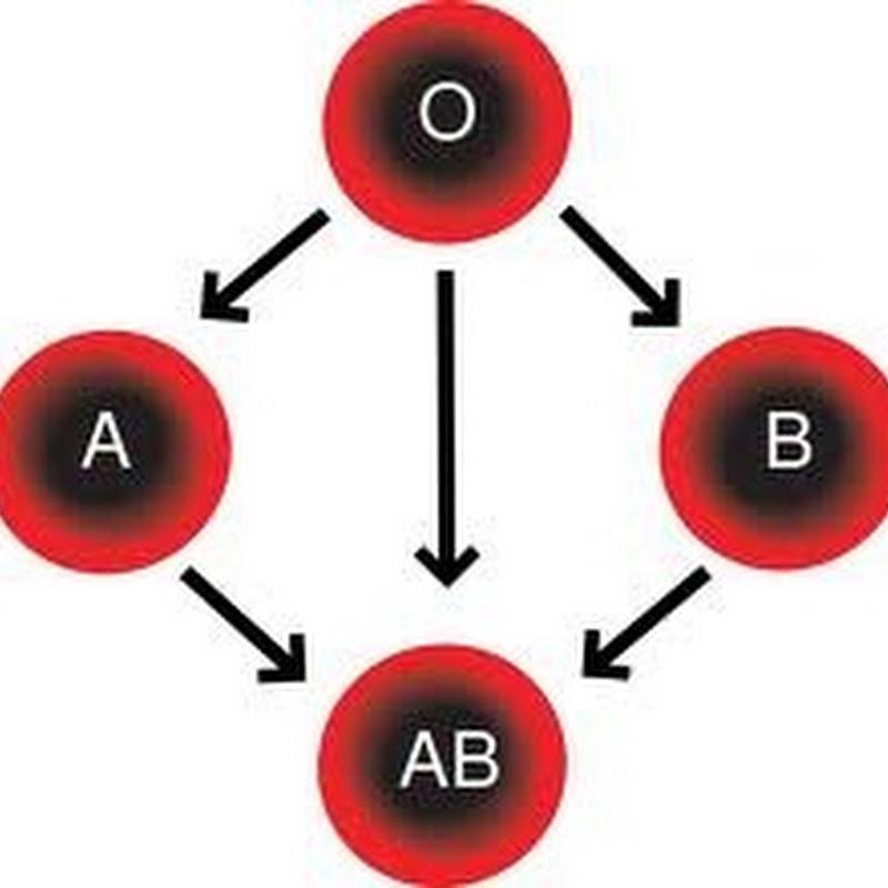 غرائب وطرائف لا تعرفها عن فصائل الدم