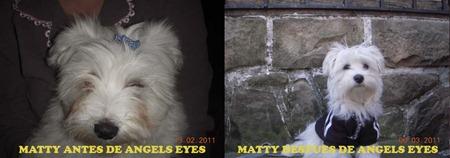 MATTY ANTES Y DESPUES ANGELS EYES