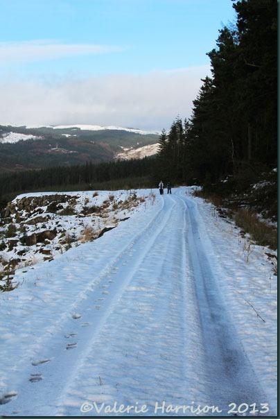 14-snow-track