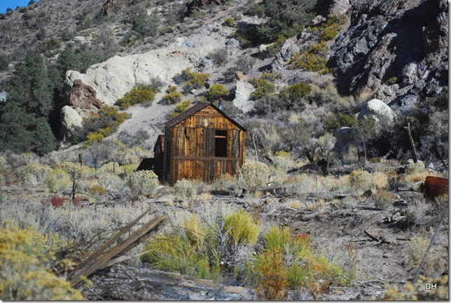 11-04-13 E Strozzi Ranch (31)