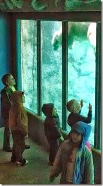 Zoo 4-2014
