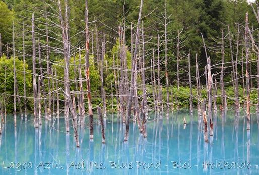 Lagoa Azul - Biei - Hokkaido - Glória Ishizaka - 31