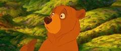 09 Kenai en ours