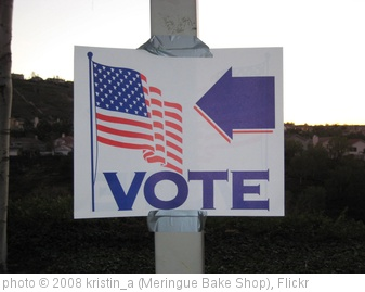 'Vote!' photo (c) 2008, kristin_a (Meringue Bake Shop) - license: http://creativecommons.org/licenses/by-sa/2.0/