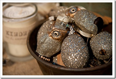 Christmas Ornaments 2011-3620