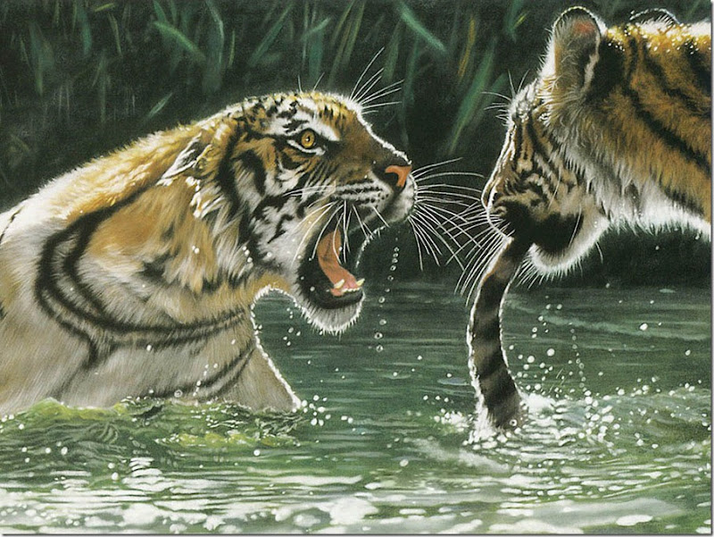 animales tiernos (11)