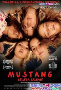 Trốn Chạy - Mustang Tập HD 1080p Full