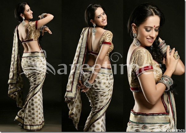 Monali_Sehgal_Hot_Saree