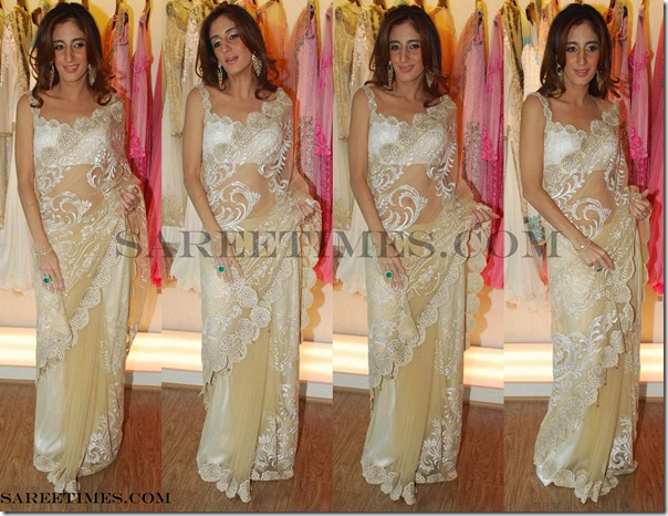 Sarah_Jane_Shimmer_Saree