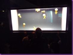 bowling aquarium 021
