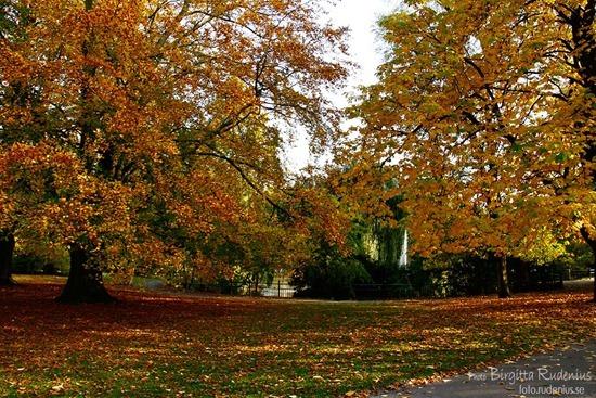 lund_20111024_parken