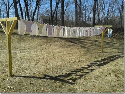 Homegrown Catholics: Nice Laundry Day