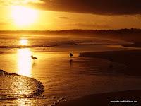 Seven Mile Beach Sonnenuntergang