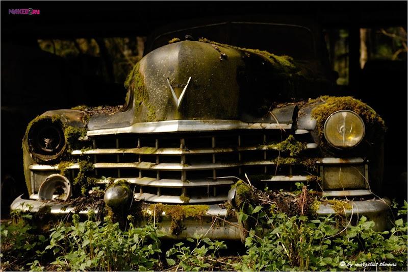 cars_018.jpg