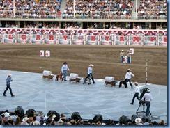 9558 Alberta Calgary Stampede 100th Anniversary - GMC Rangeland Derby & Grandstand Show - intermission kids 'Chuckwagon Race'