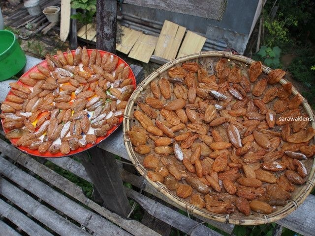 dried_belimbing_asam