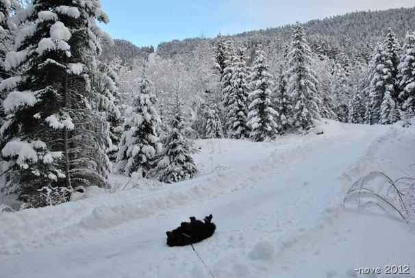 Winter 022