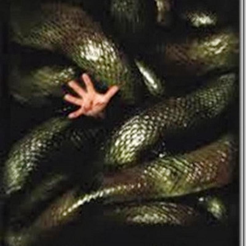 Anaconda 2 ล่าอมตะขุมทรัพย์นรก