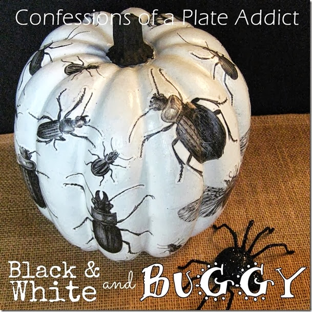 CONFESSIONS OF A PLATE ADDICT Decoupage Insect Pumpkin