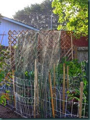 Garden Folly IV, netting 001