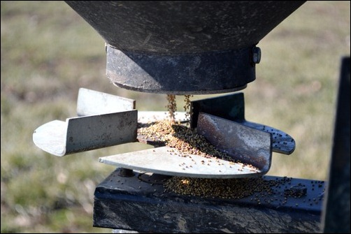 dispensing clover seed