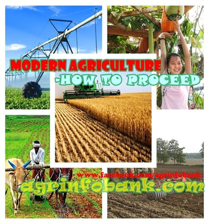 MODERN AGRICULTURE-HOW TO PROCEED
