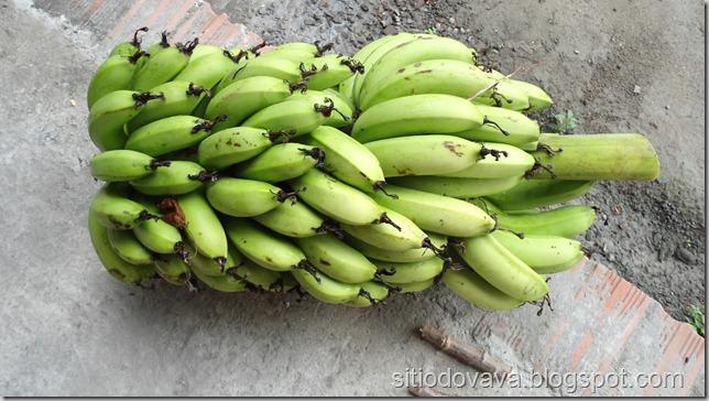 banana anã