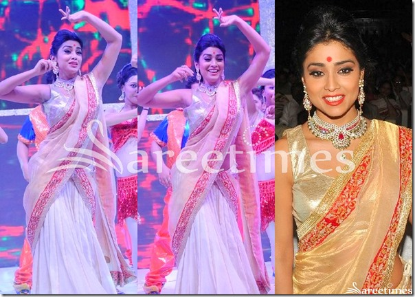 Shriya_White_Gold_Half_Saree